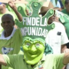 Marcha Verde convoca piquete contra Danilo en las Naciones Unidas
