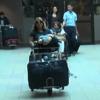 Miles de dominicanos residentes en el exterior llegan al país