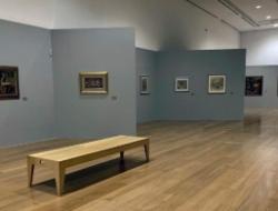 Los museos argentinos «abren sus puertas» online para paliar la cuarentena