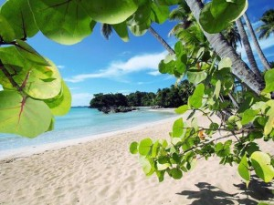Playa-Dom